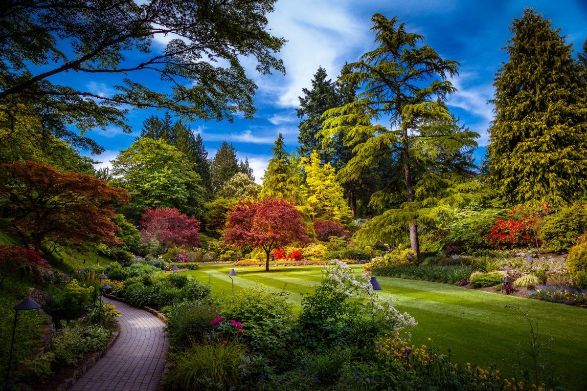 I giardini dimenticati